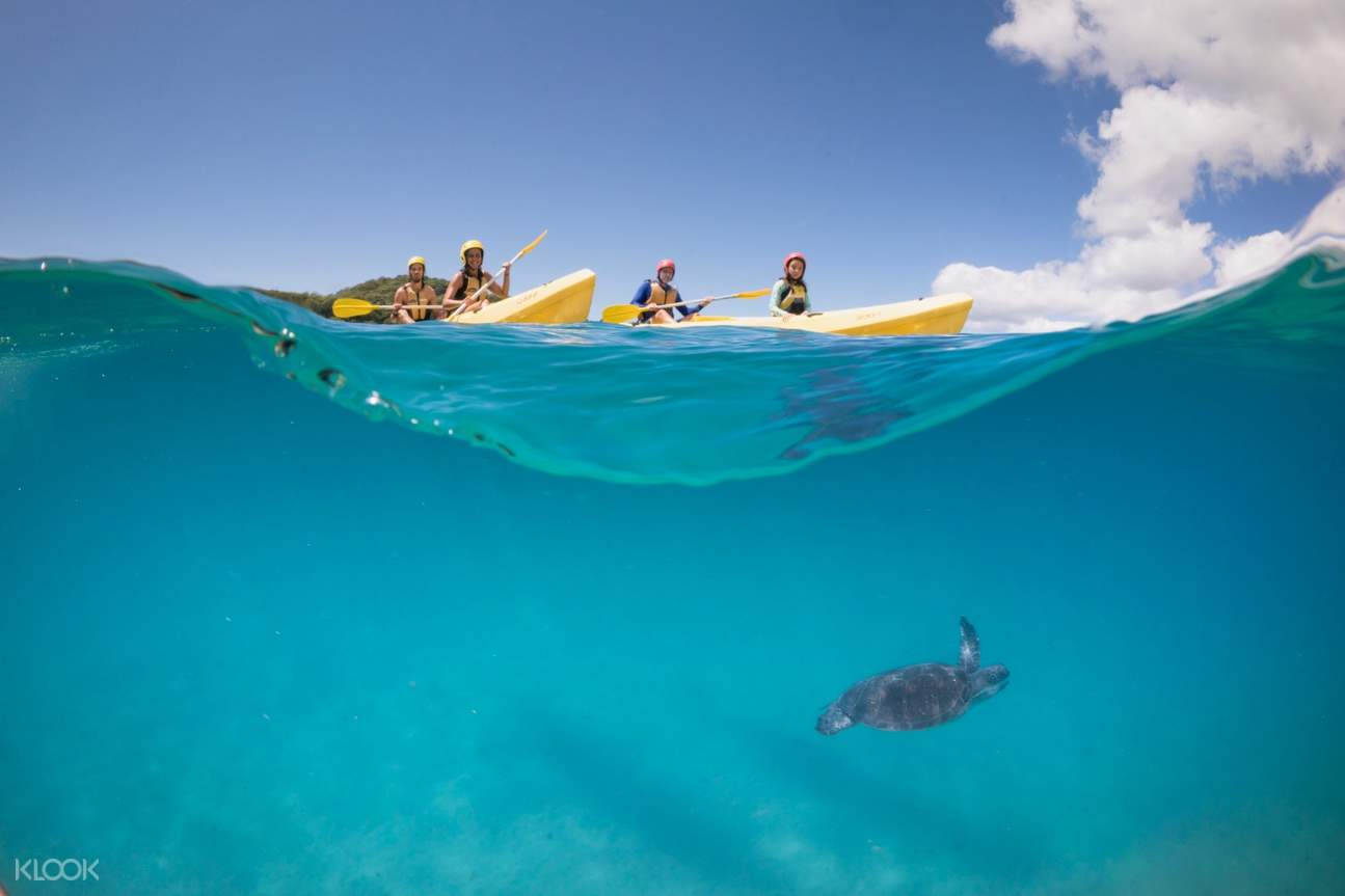 Boat kayaking tour