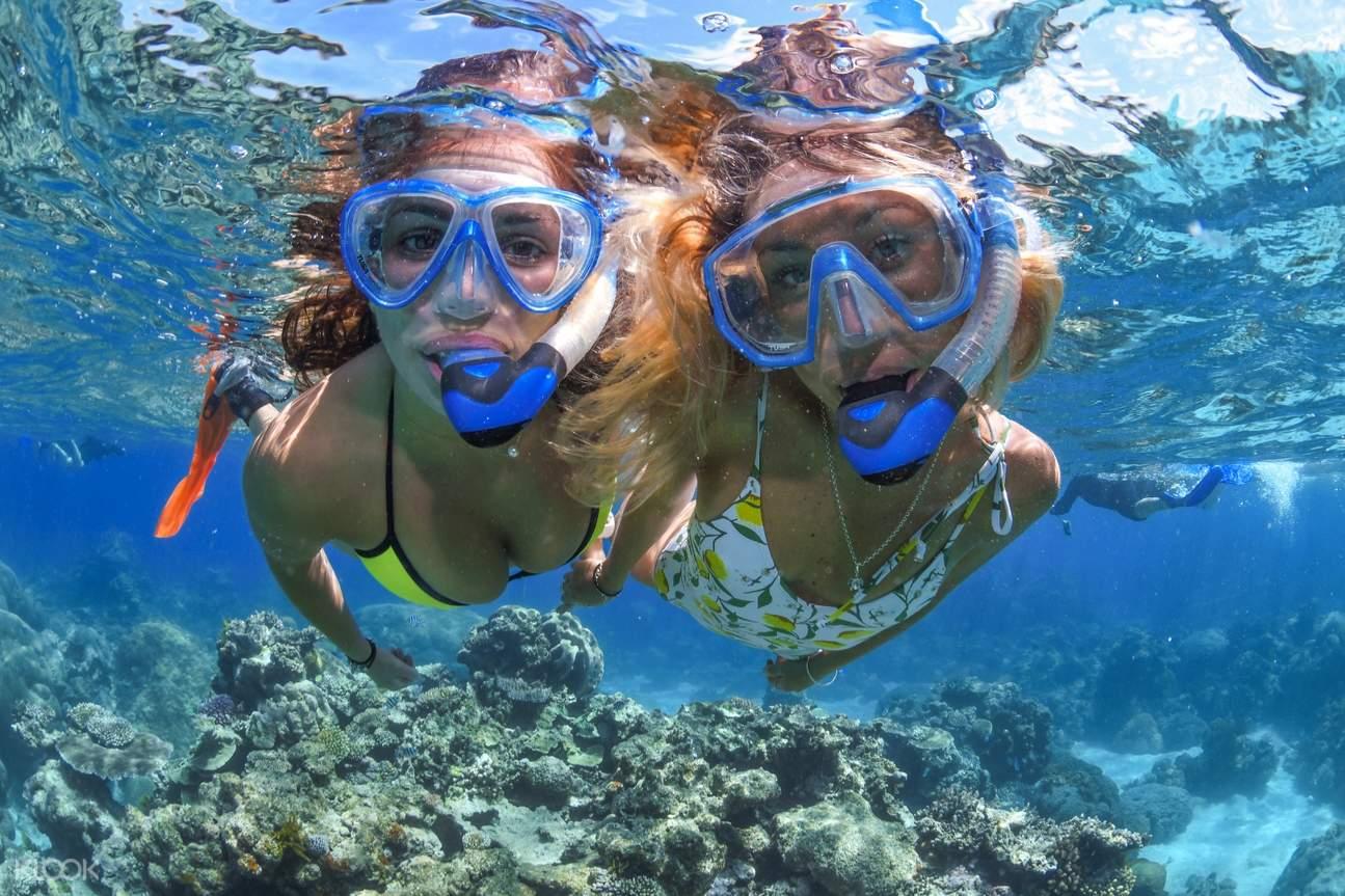 great barrier reef snorkel in cairns