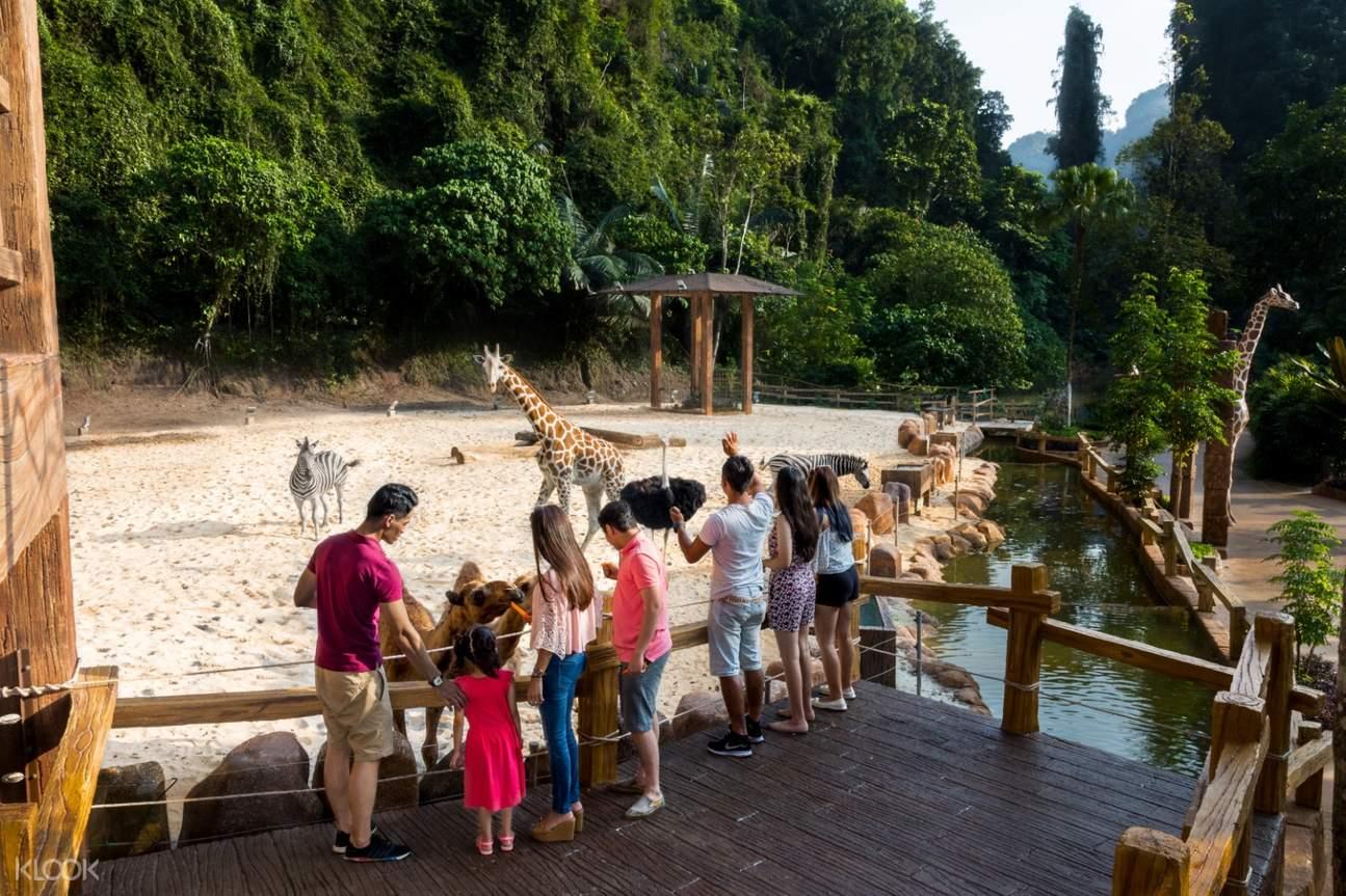 petting zoo lost world of tambun ipoh
