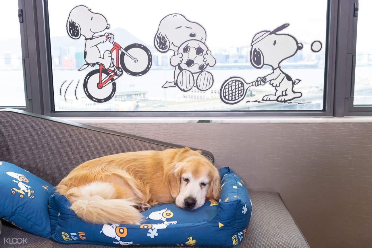 Snoopy Dogcation