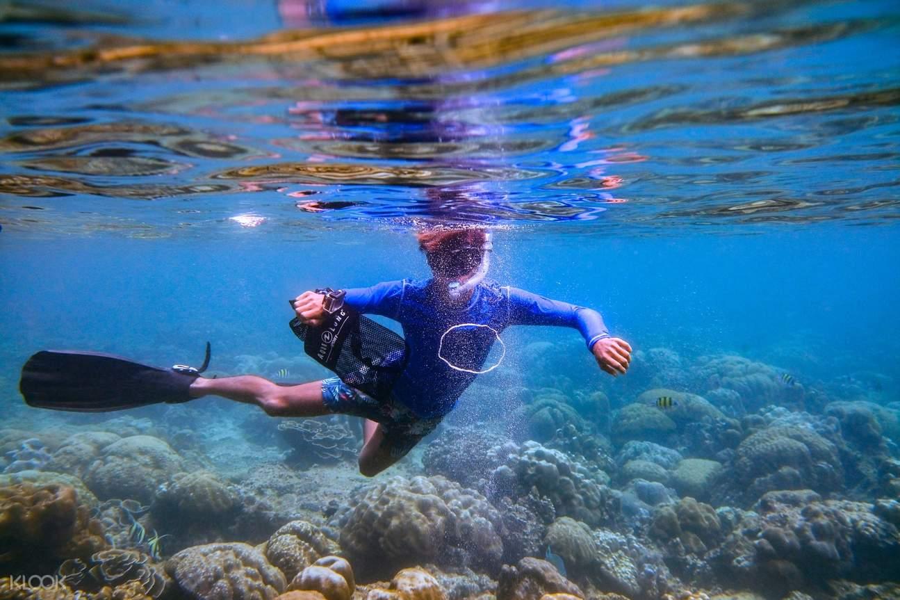 swimming tourist