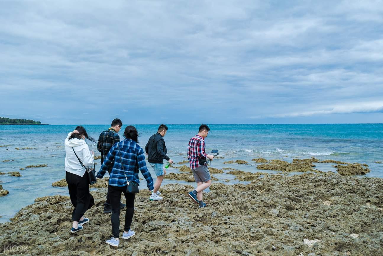 潮間帶生態觀察