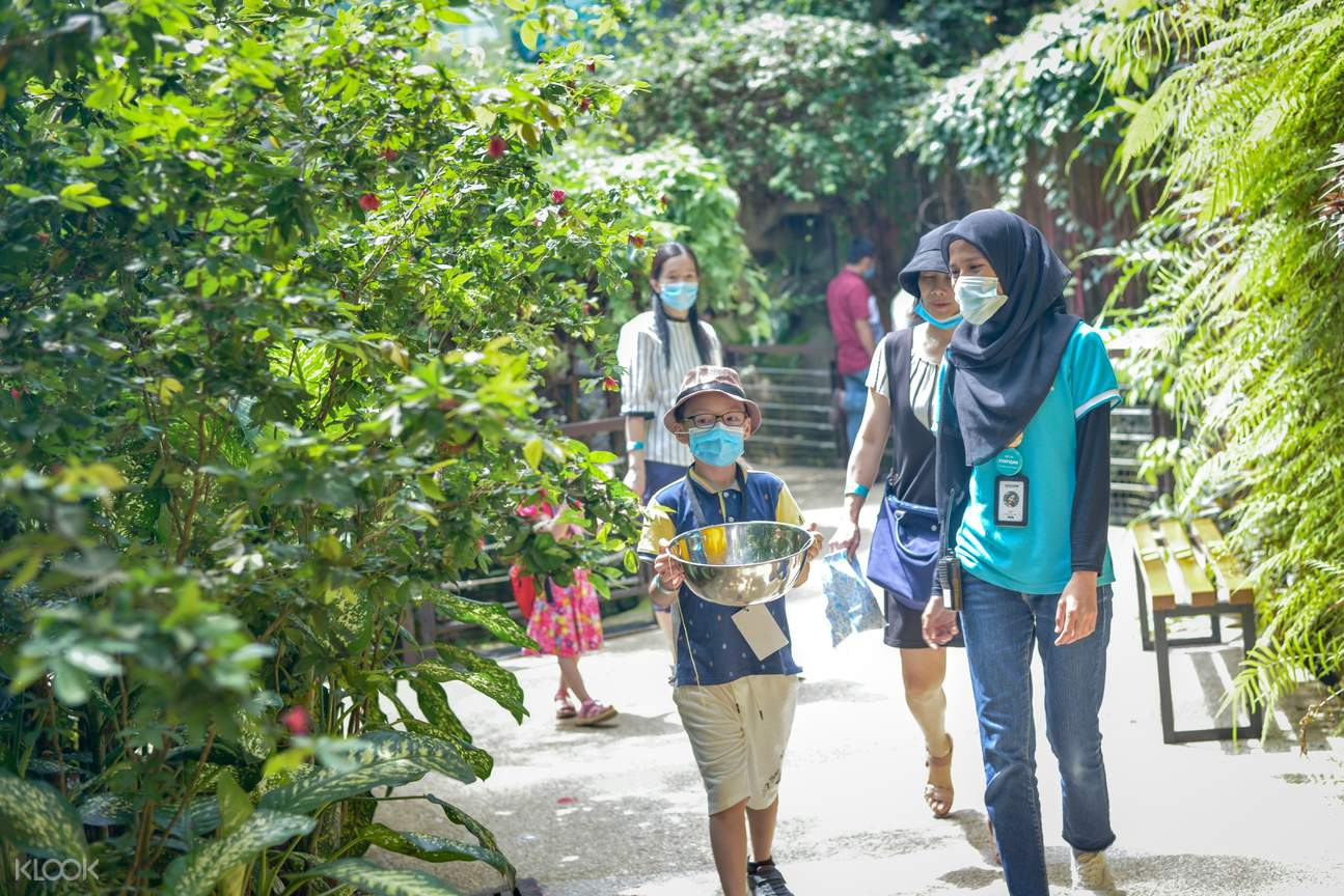 Visitors following SOP