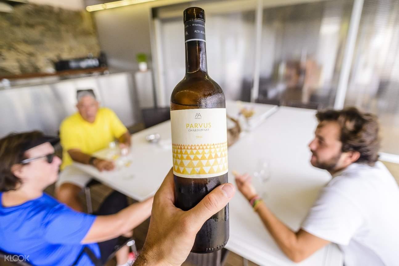 巴賽隆納電動自行車,巴賽隆納葡萄酒體驗,巴賽隆納葡萄酒莊參觀,巴塞羅那葡萄酒品鑑