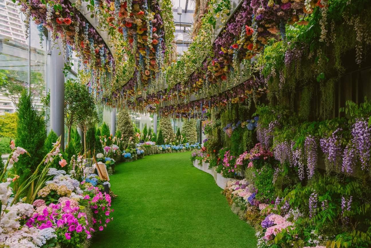 ガーデンズバイザベイのスーパーツリー