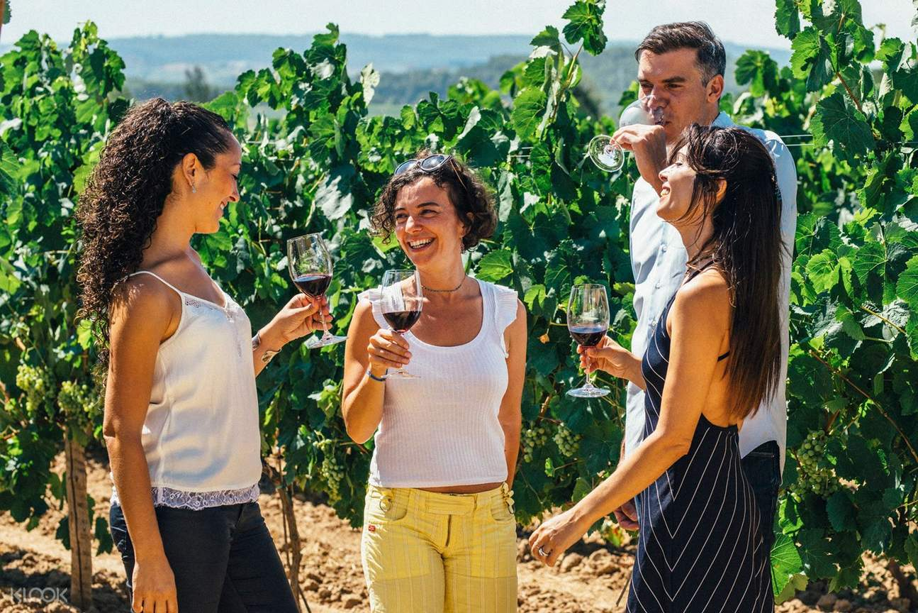 guided vineyard tour