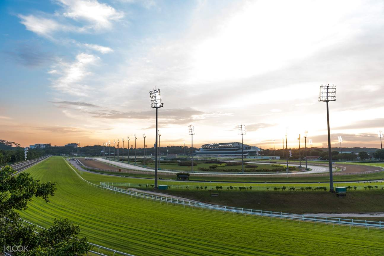 view of the a horse race track