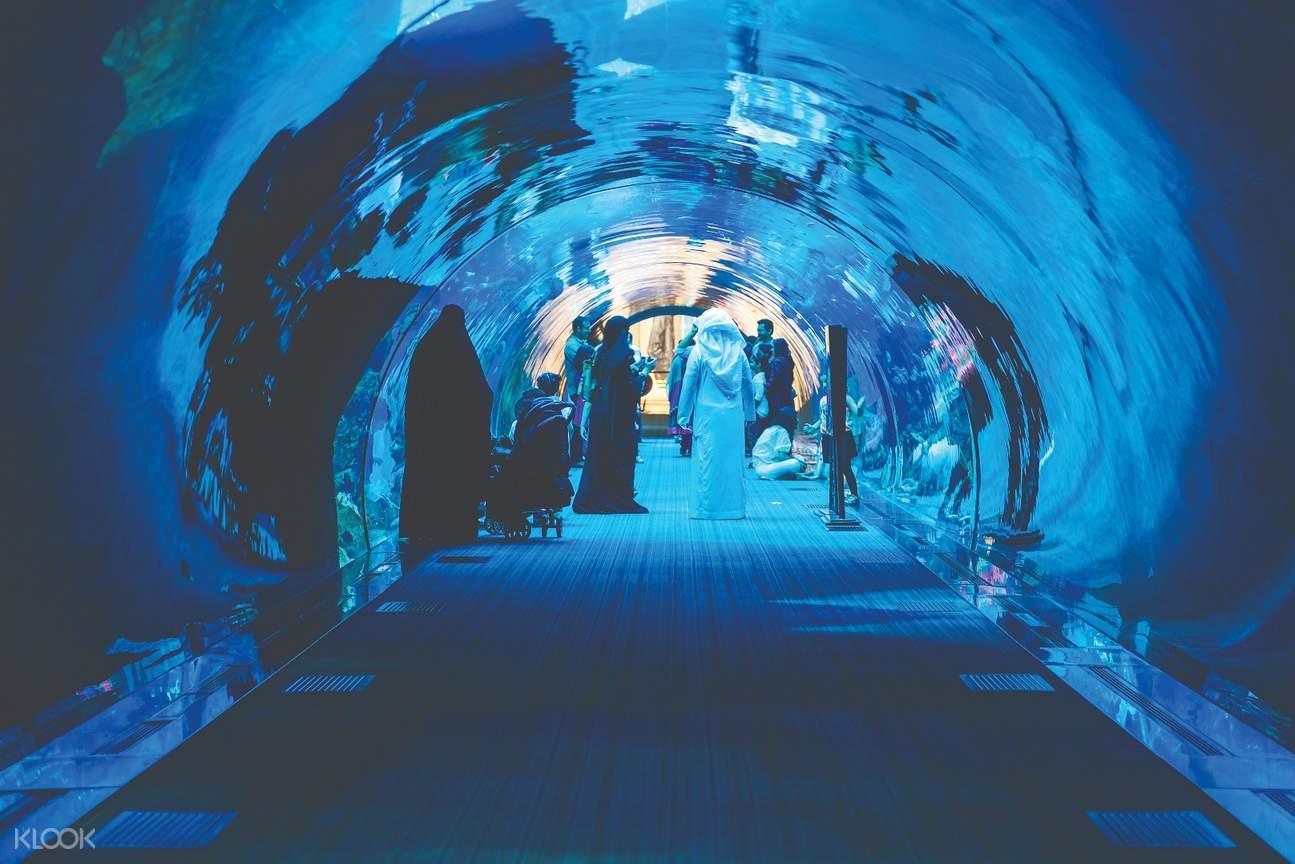 杜拜水族館 & 水下動物園(基礎體驗項目)