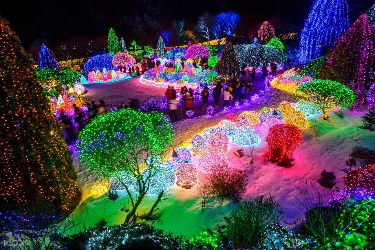 light festival garden of morning calm