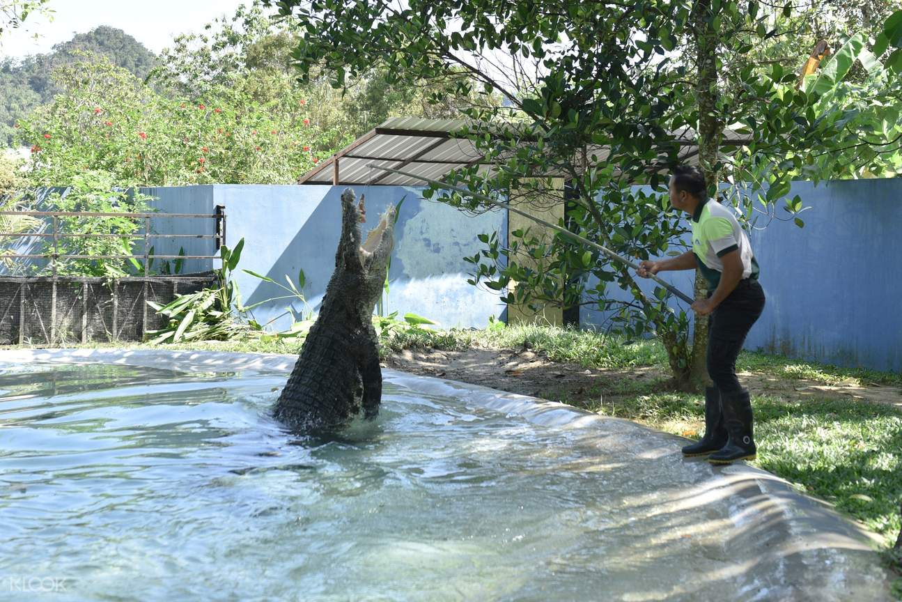 Langkawi Wildlife Park Admission Ticket in Malaysia