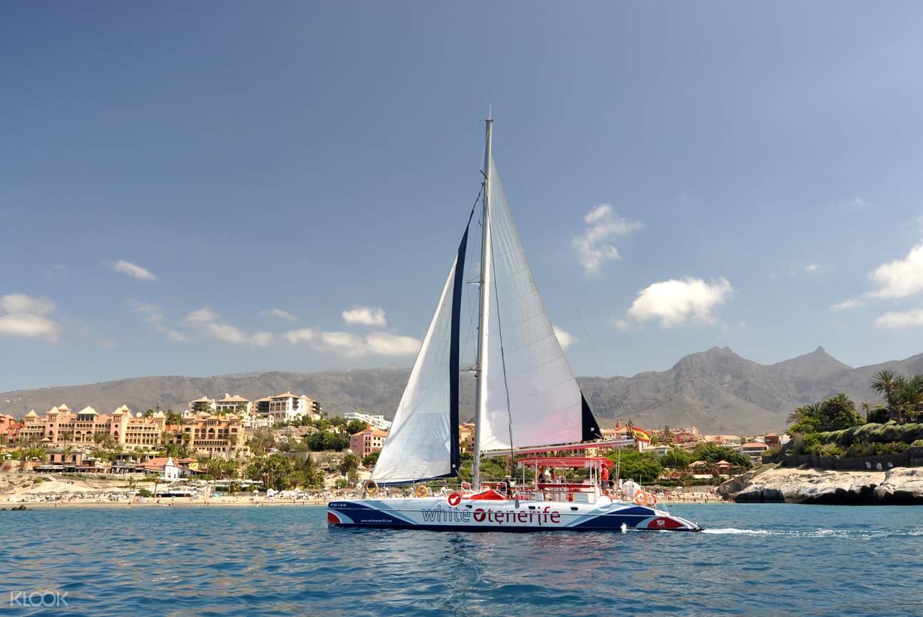 catmaran boat sailing in tenerife