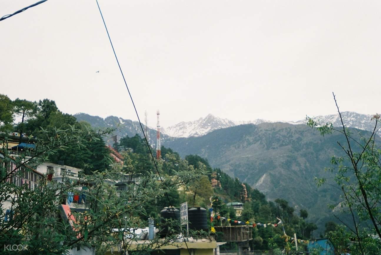 包車遊覽 達蘭薩拉觀光一日遊
