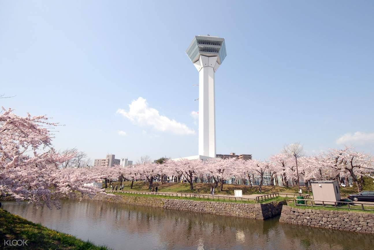 春のタワー