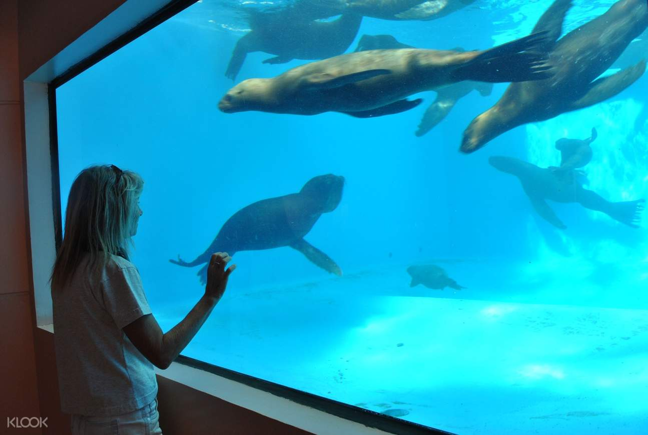 Ocean Adventure aquarium