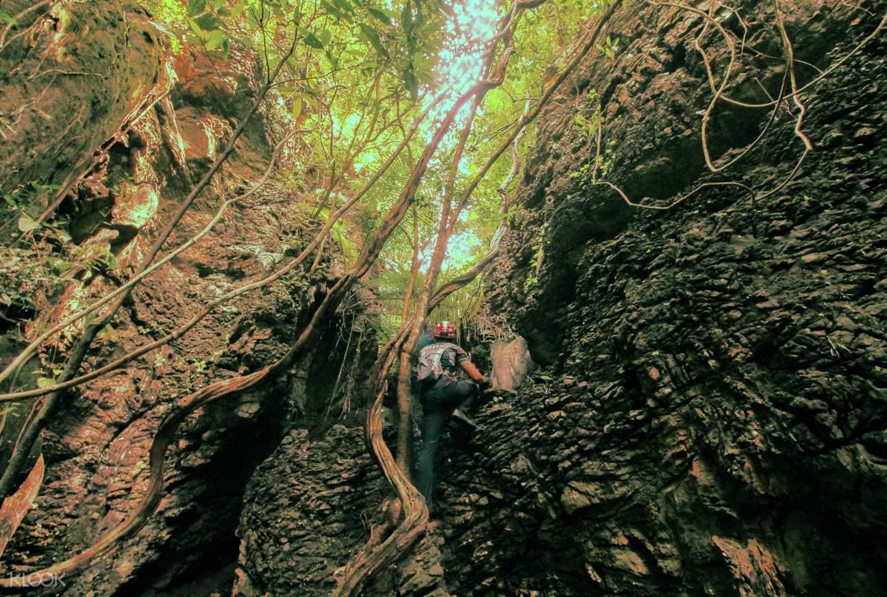 rock climbing in xscape tambun