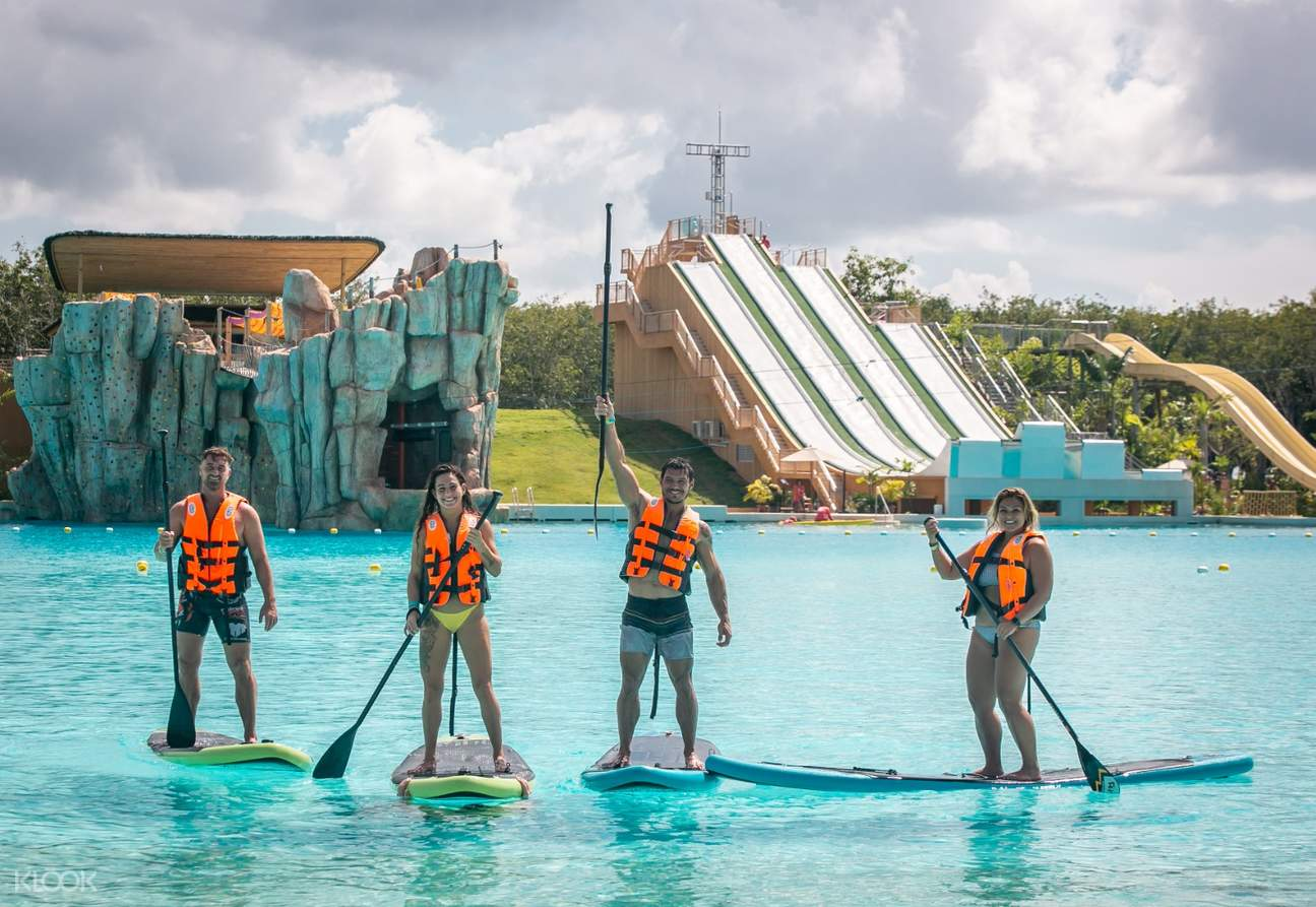 four people stand up paddleboarding
