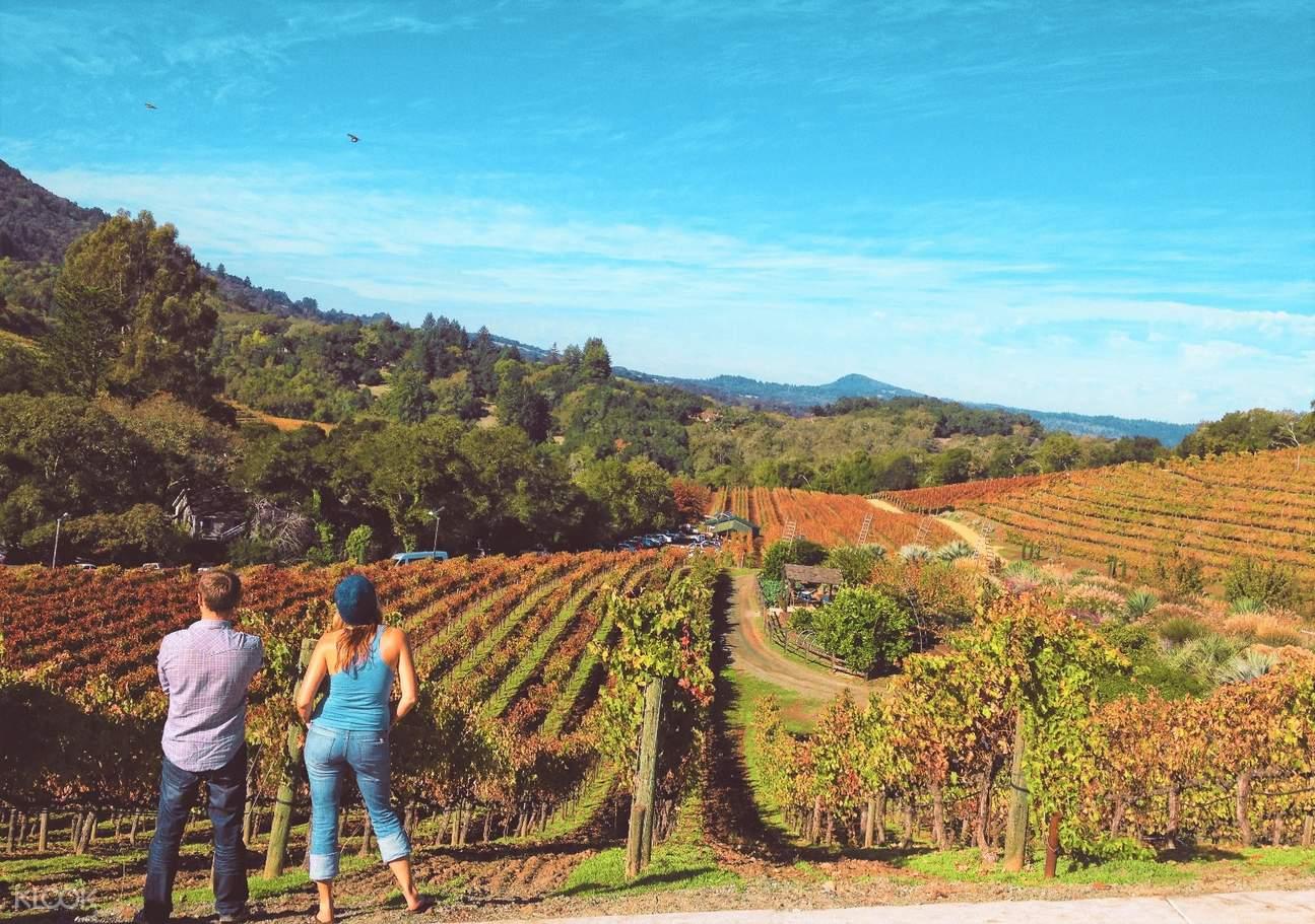 纳帕索诺玛葡萄酒乡一日游