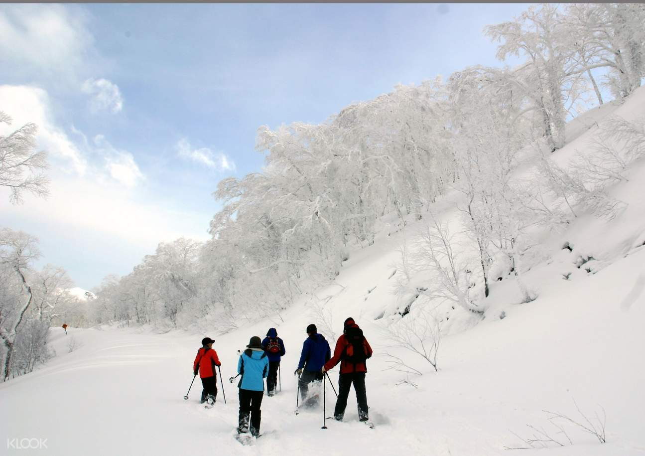 Visitors walking next to noboribetsu snow monsters