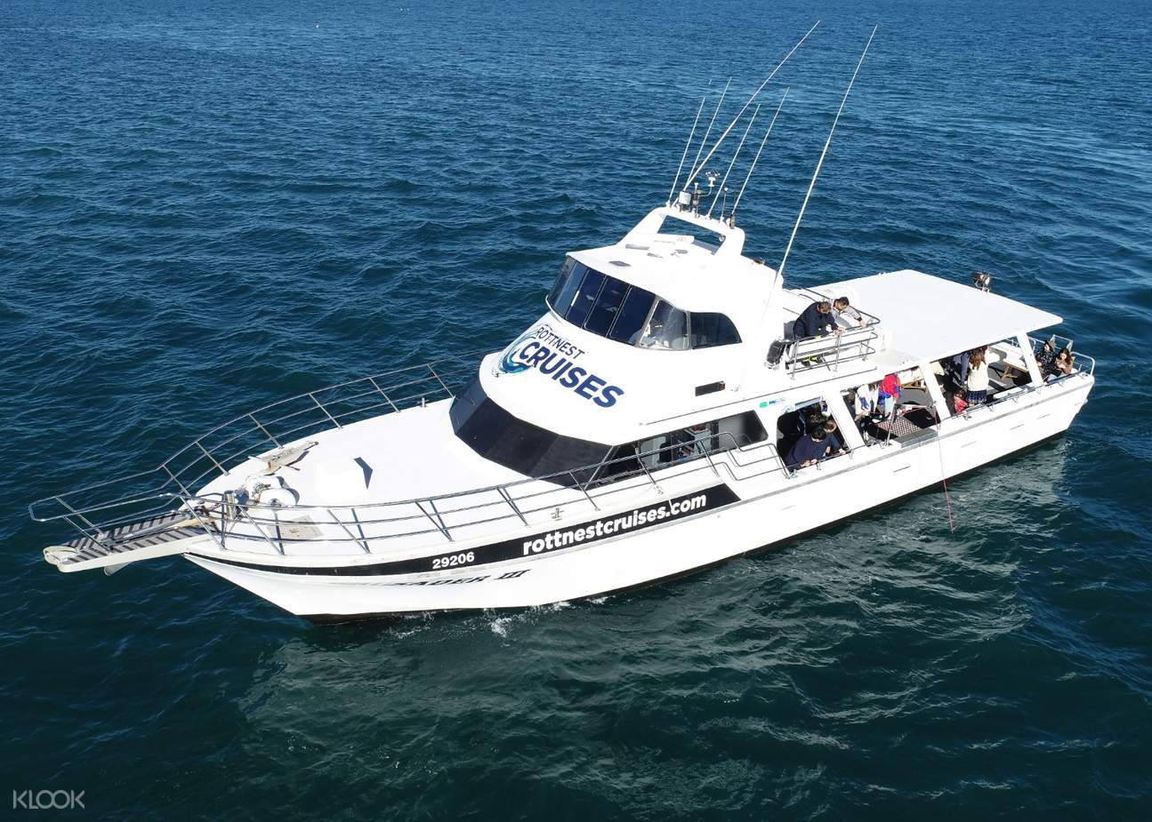 boat cruising in rottnest island seafood experience