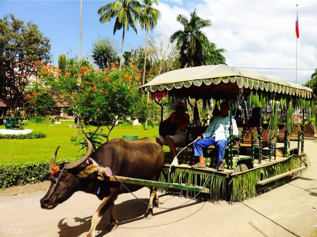 local tourists on a carabao drawn carriage