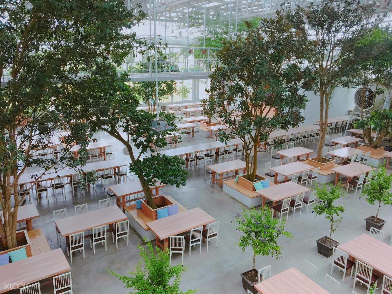 在室外花園放鬆身心,欣賞花草,享受下午茶餐點