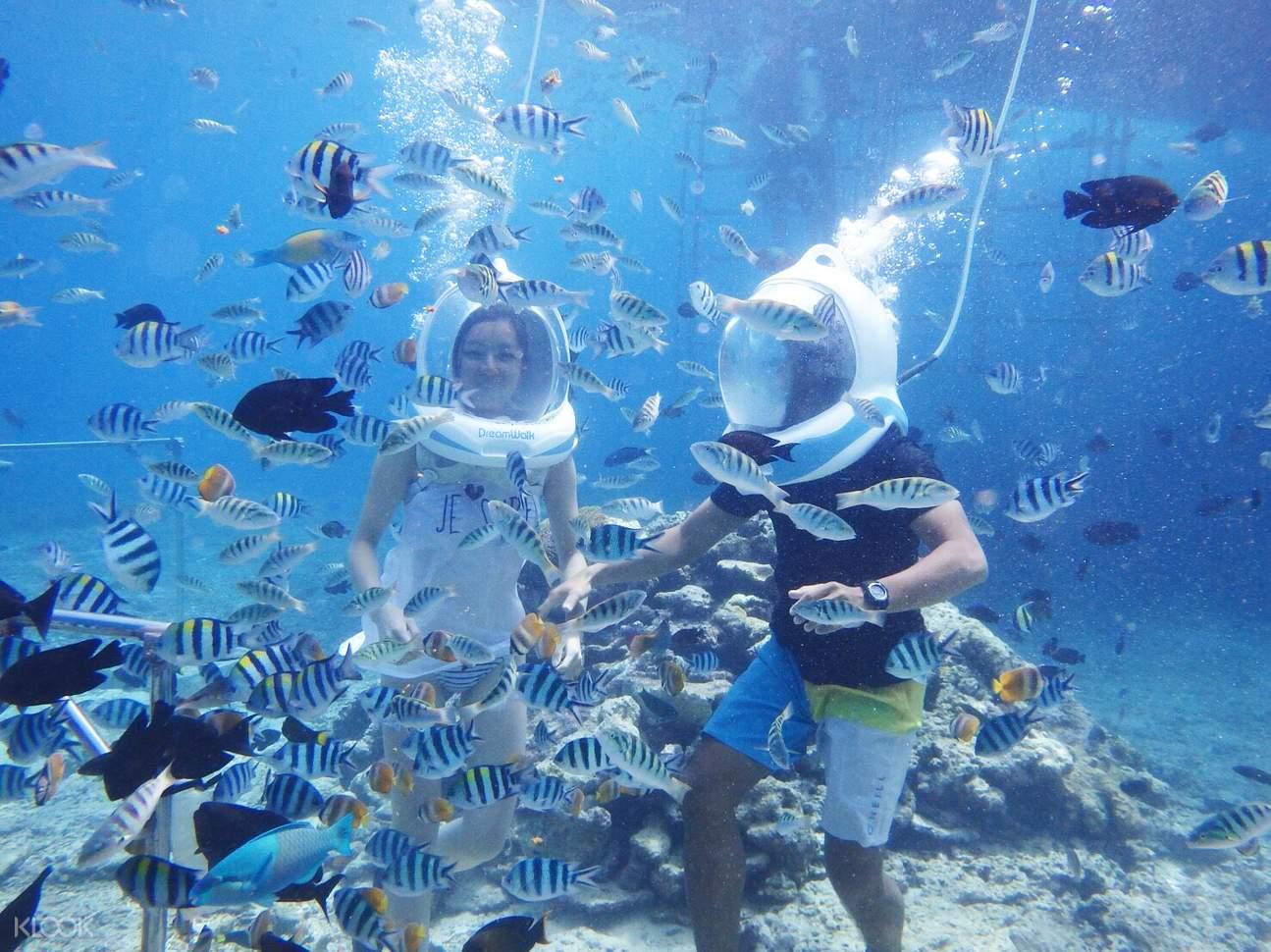 巴厘岛潜水,巴厘岛水下活动,巴厘岛户外活动