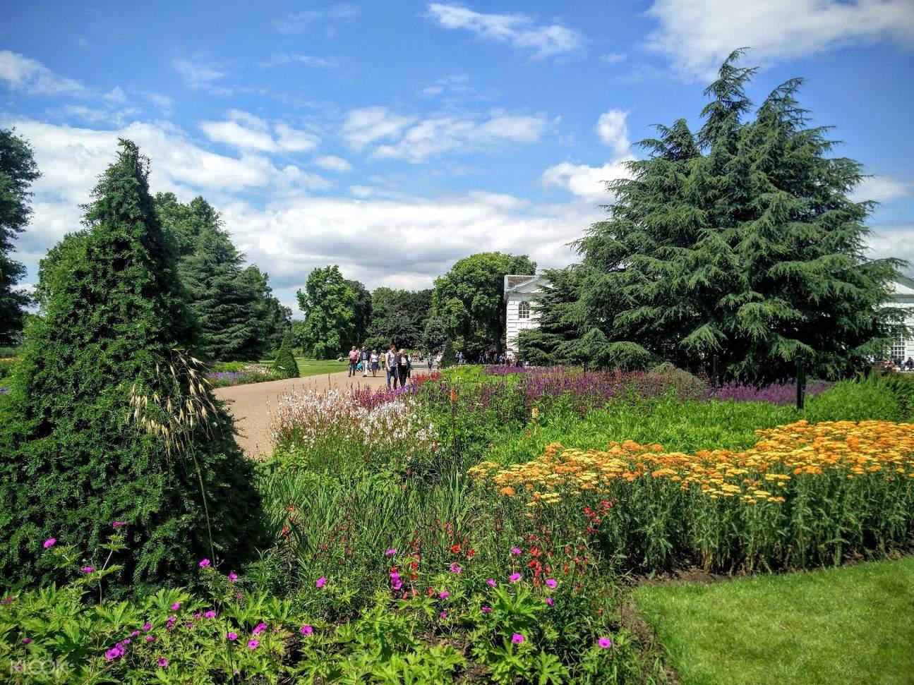 rosie potts kew gardens