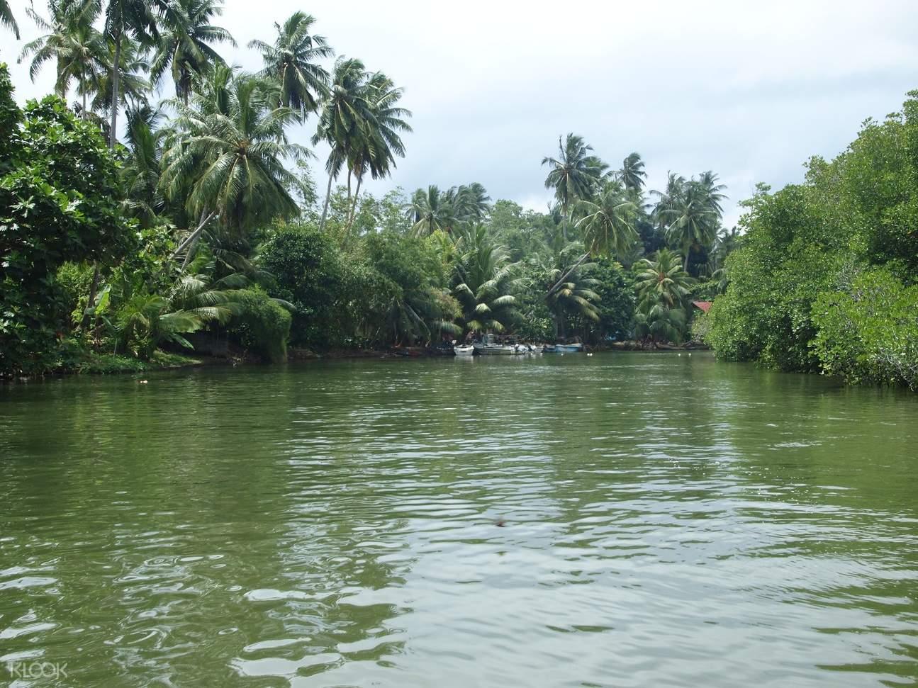 斯里蘭卡 巴勒皮蒂耶生態漂流 & 希卡杜瓦海灘浮潛(加勒出發)