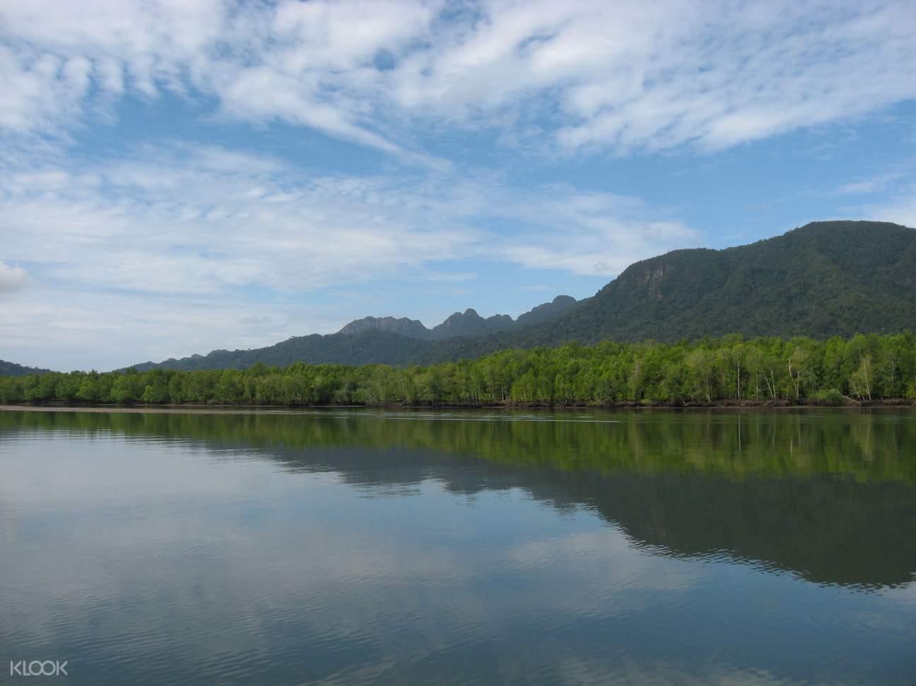 Kubang Badak River Mangrove Forest