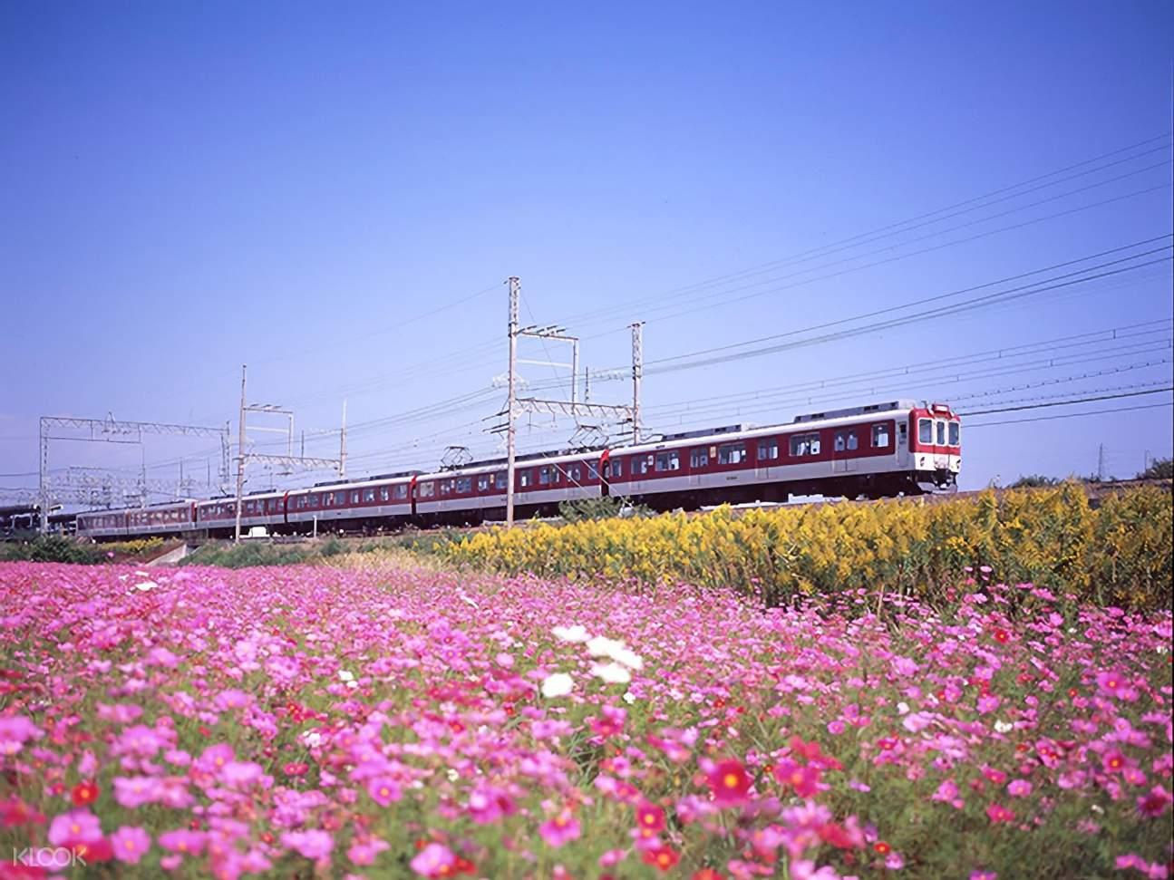 Kintetsu Railway with view of flowers