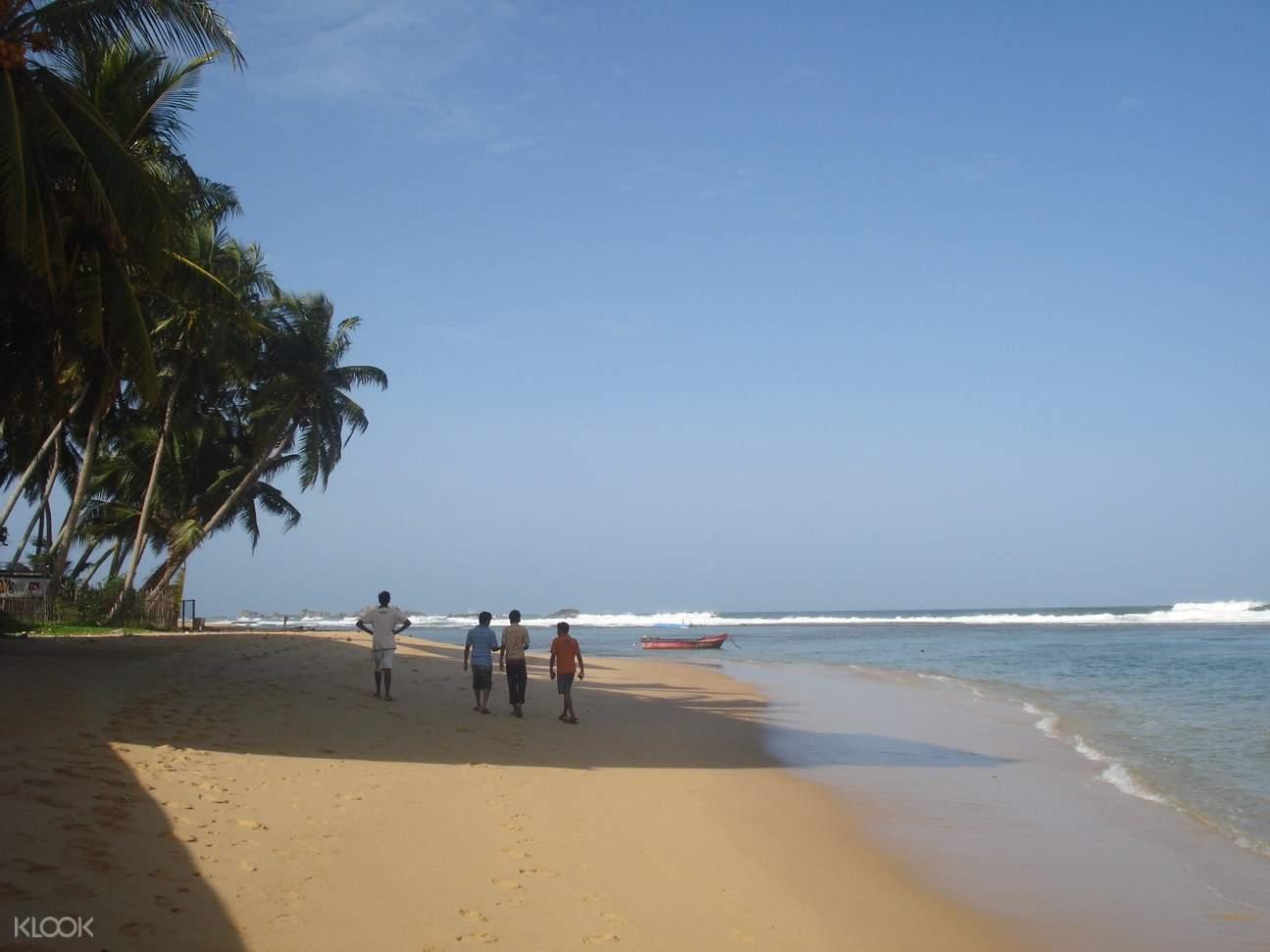 乌纳瓦图纳Unawatuna丛林海滩