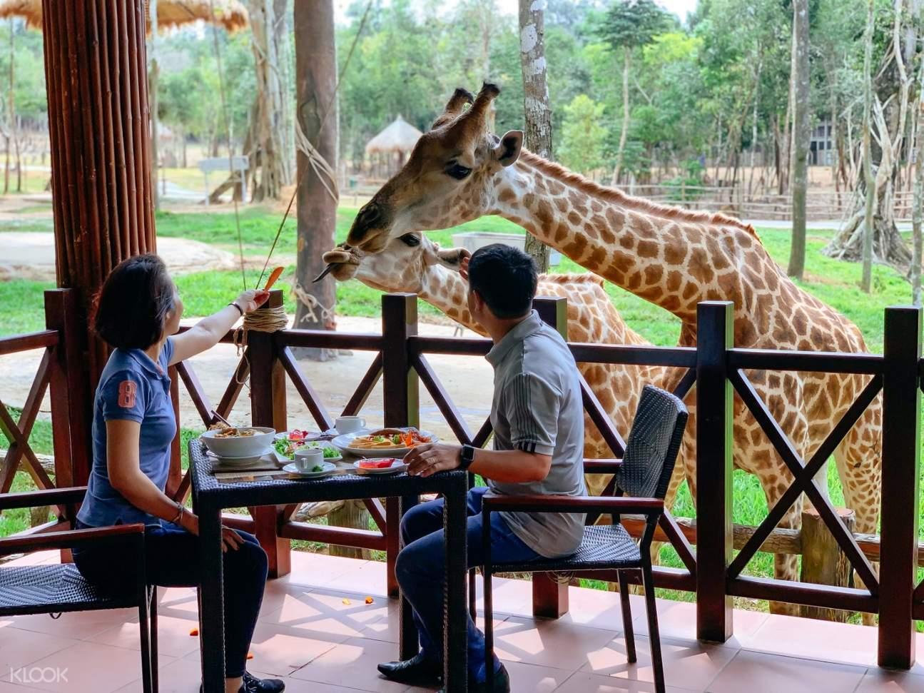 Vinpearl Safari Phu Quoc giraffe restaurant