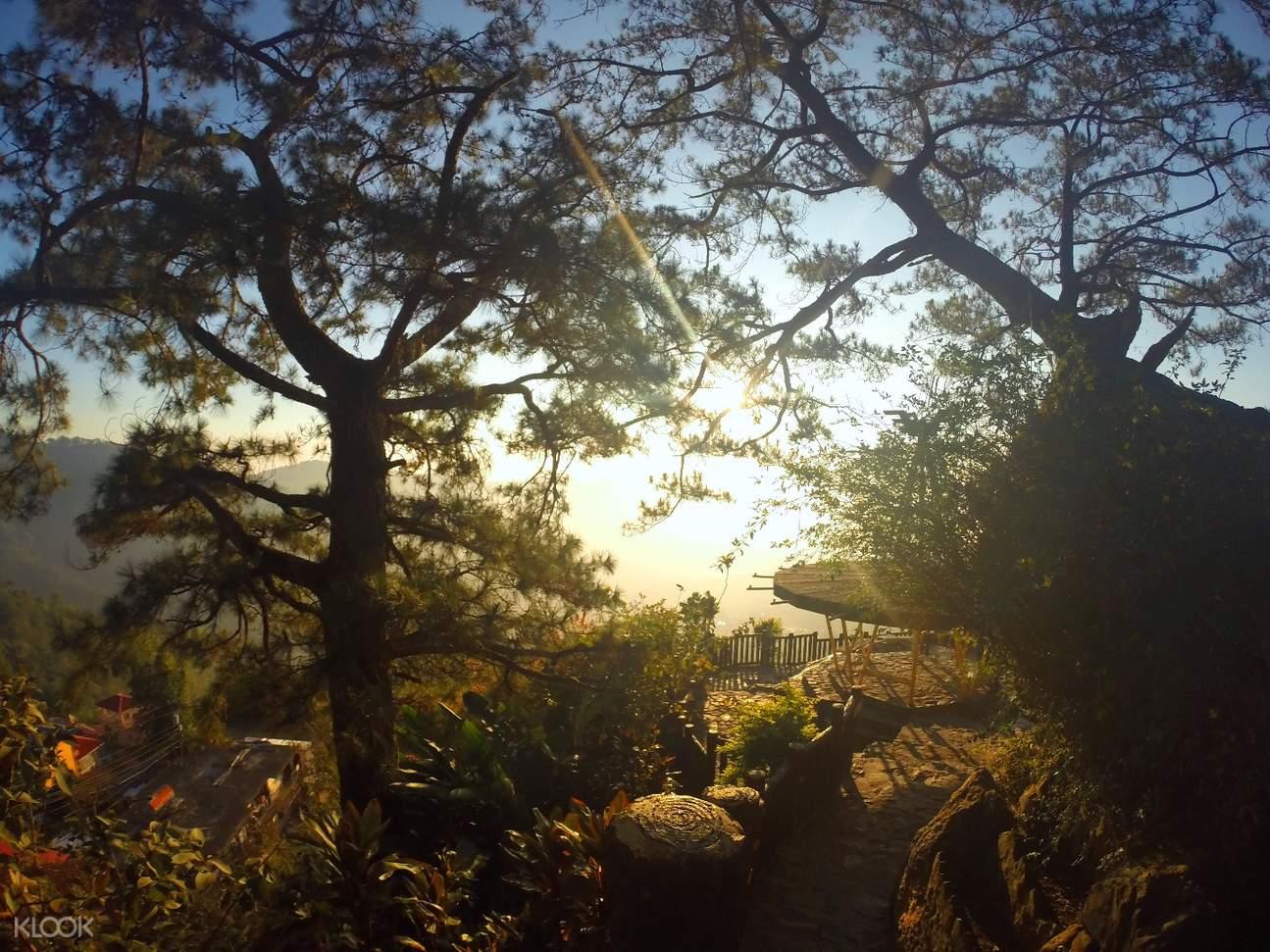 马尼拉碧瑶( Baguio)一日游