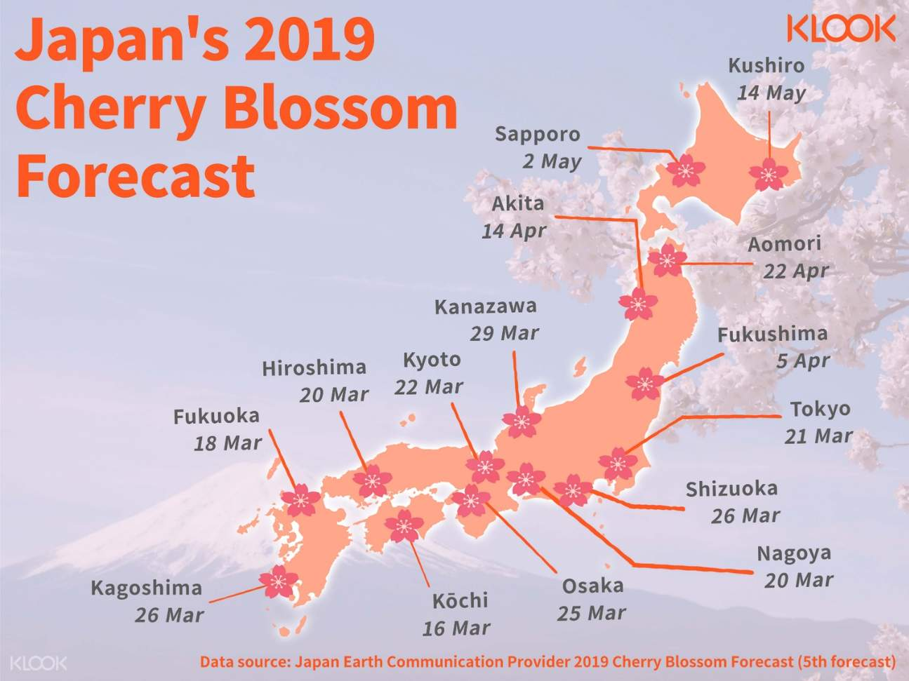 cherry blossom forecast in japan infographic