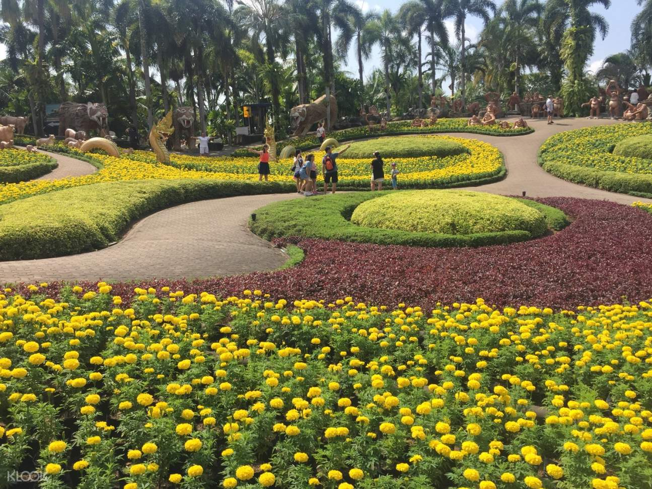 Nong Nooch Tropical Garden and Koh Larn Day Tour from Pattaya