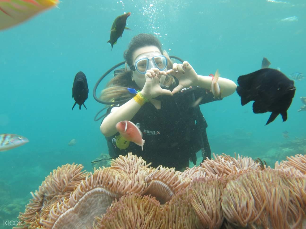 a man scuba diving in nha trang