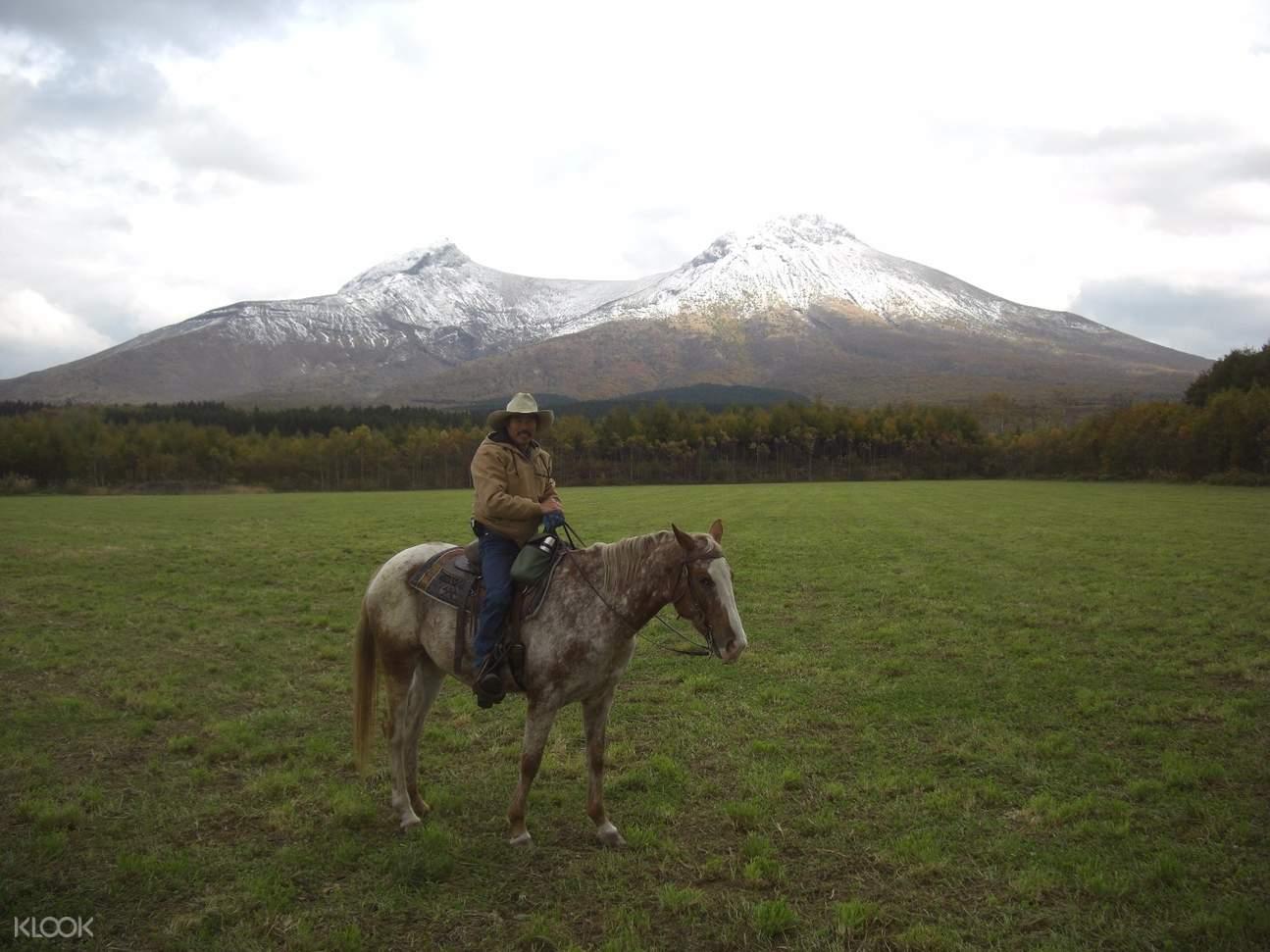 北海道骑马体验