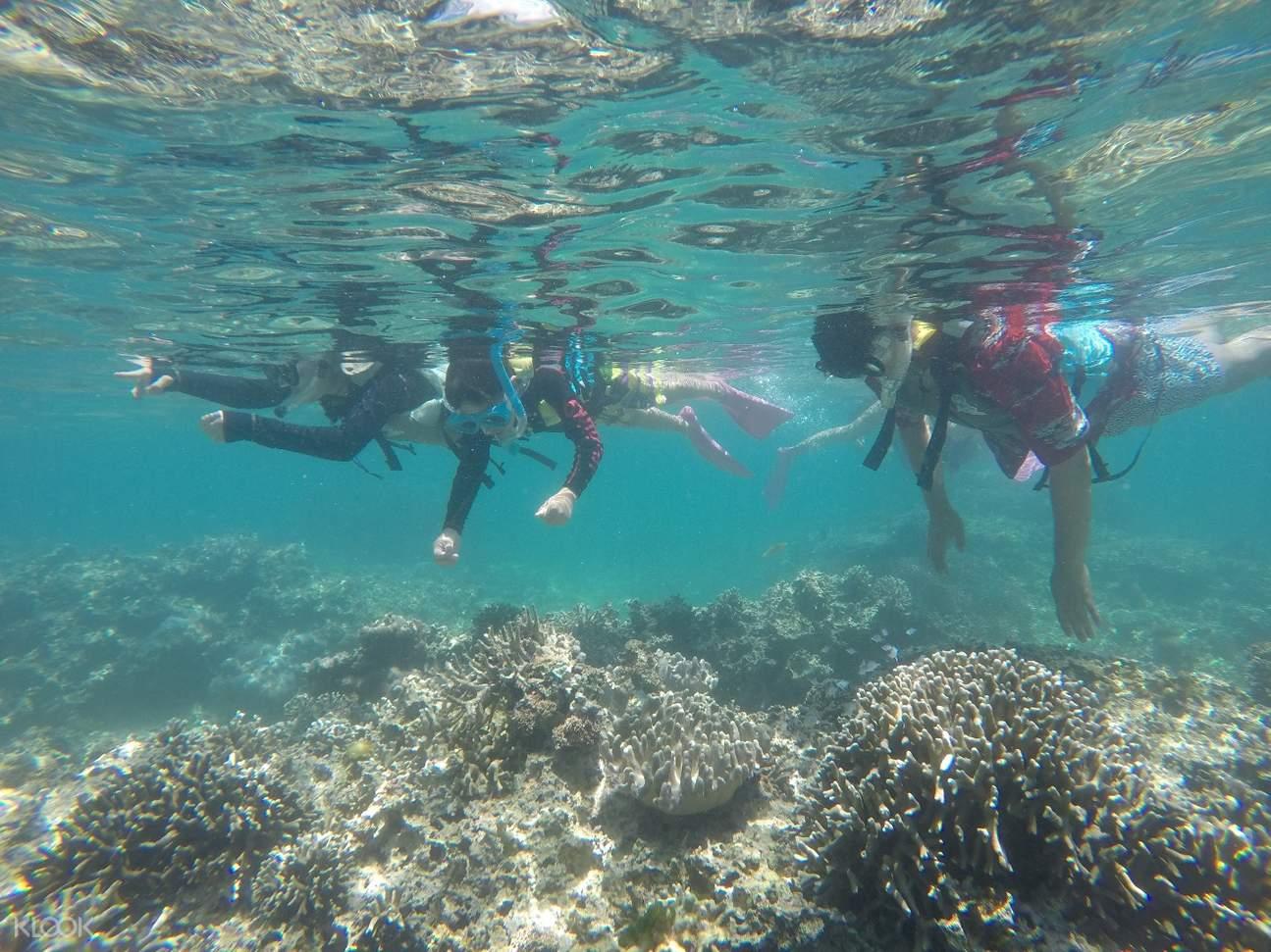 parasailing experience sesoko island