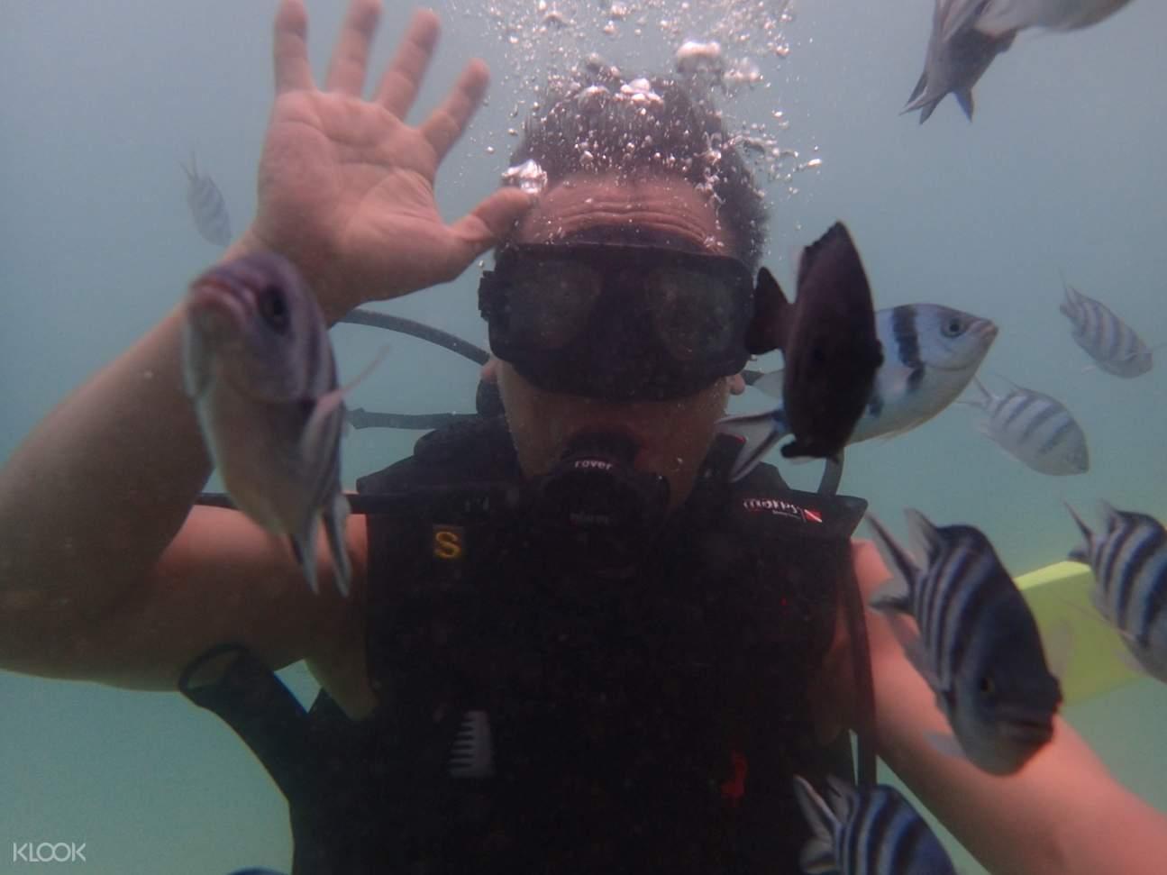 man snorkeling in gaya island