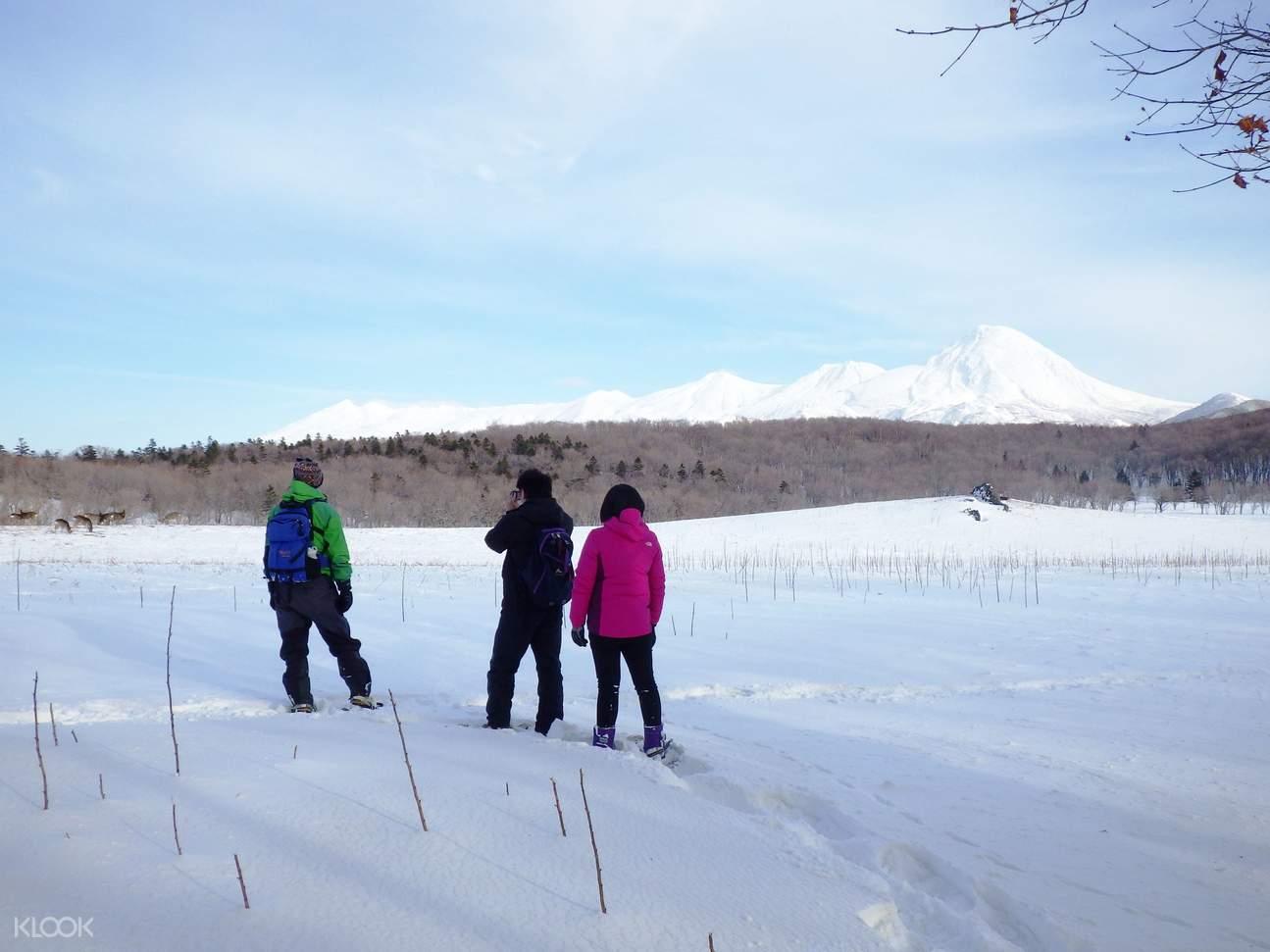 日本 北海道  知床冬季户外活动
