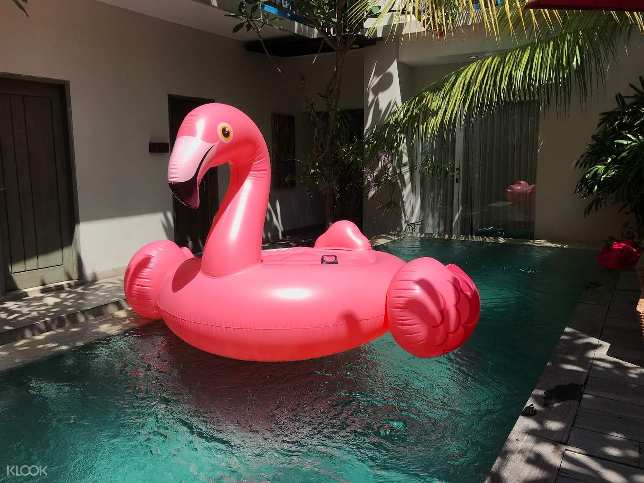 Bali Pool Float Rental