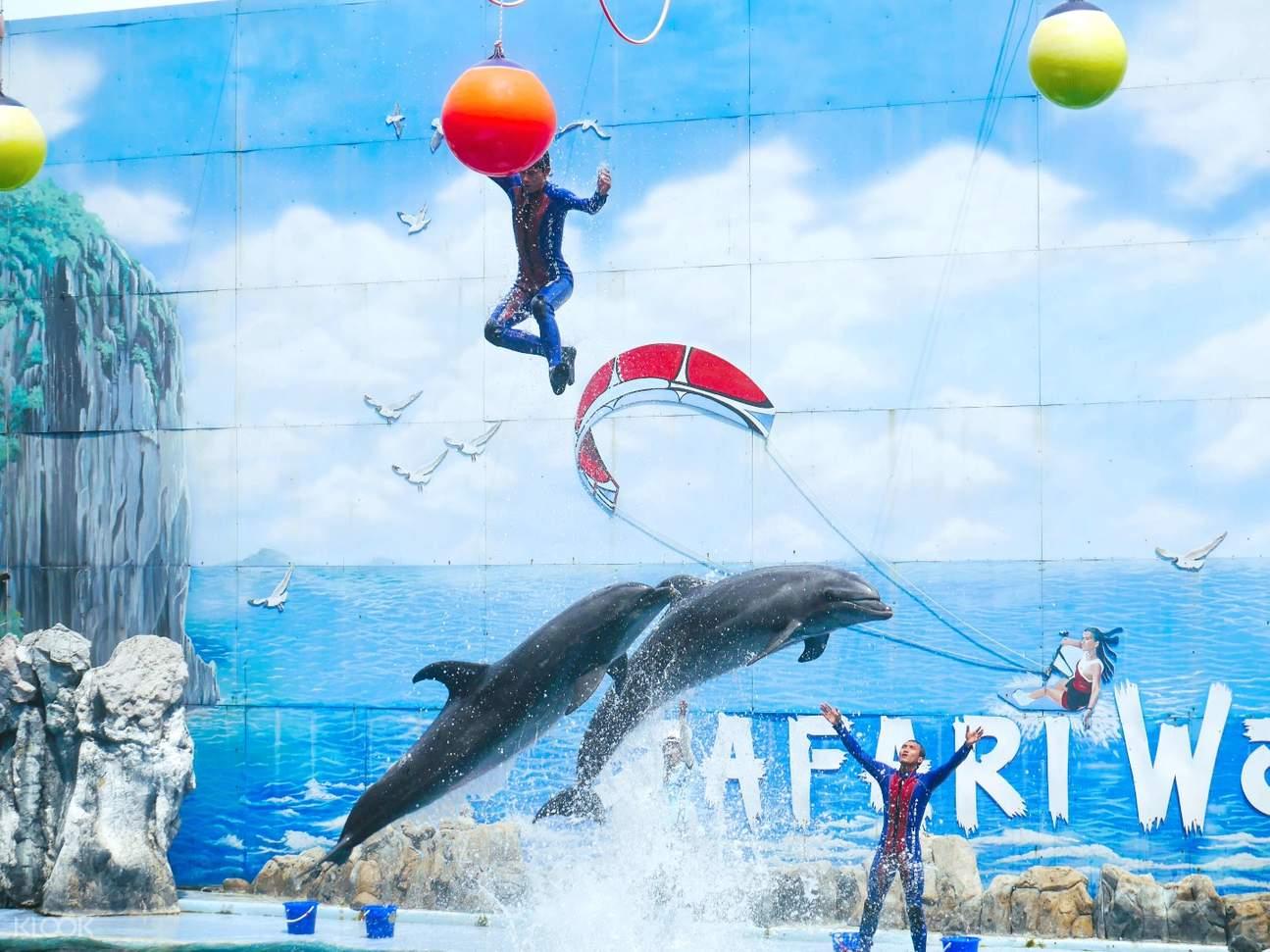 賽佛瑞野生動物園海洋世界