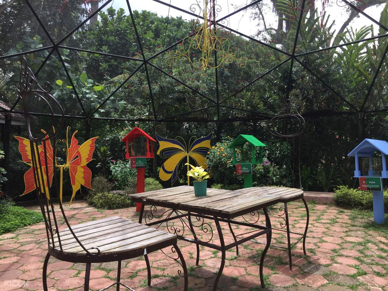 tables in the butterfly sanctuary