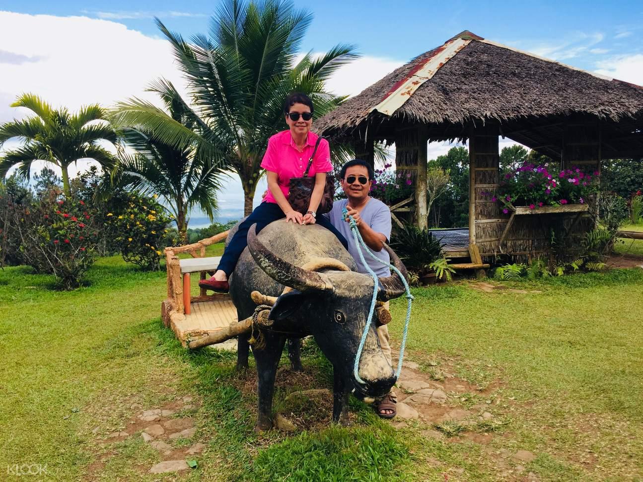 family riding the tamaraw statue