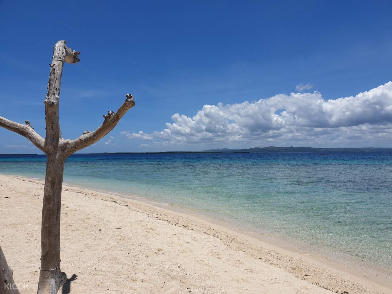 a shoreline in Pandanon