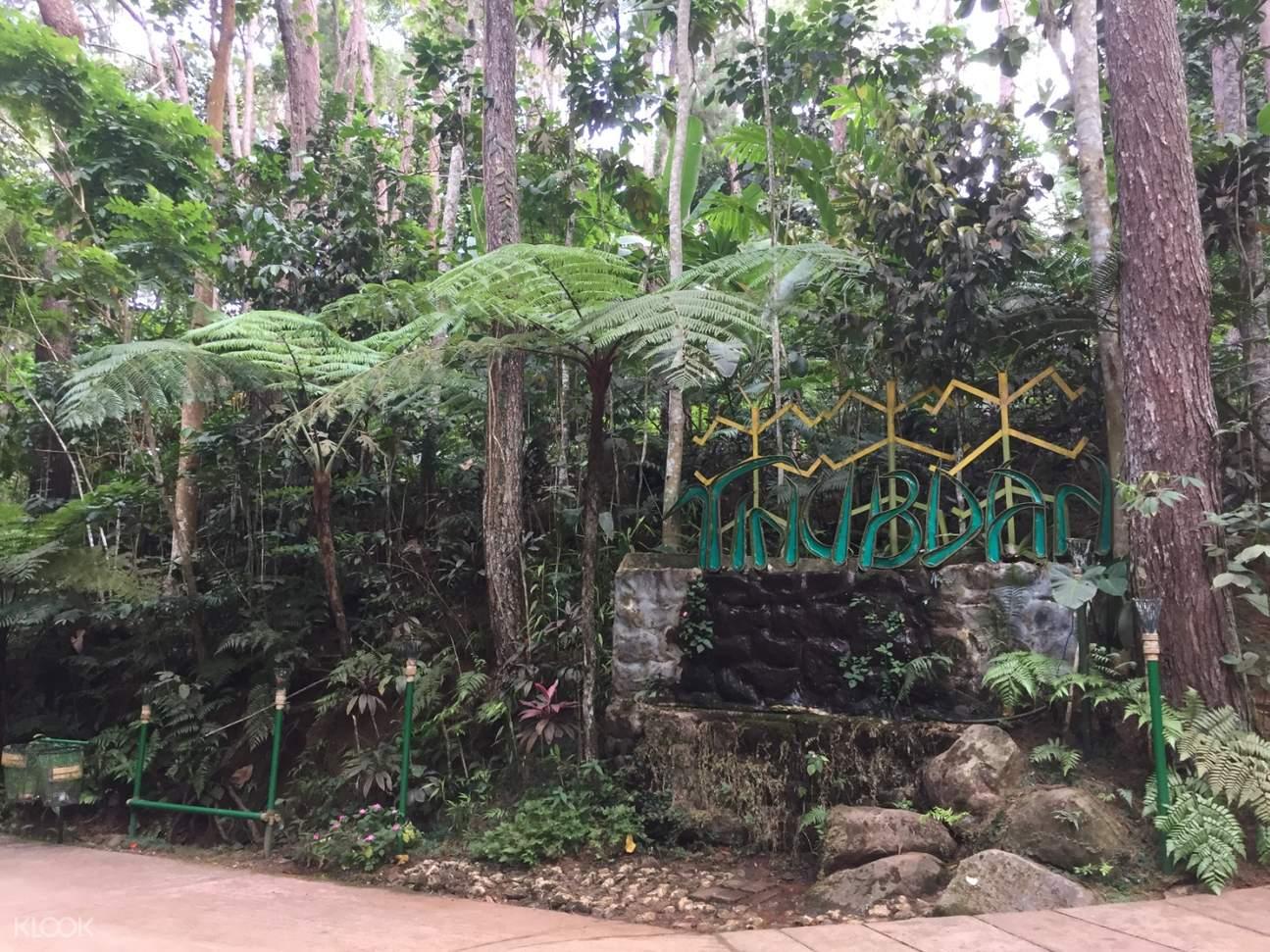 tinubdan signage