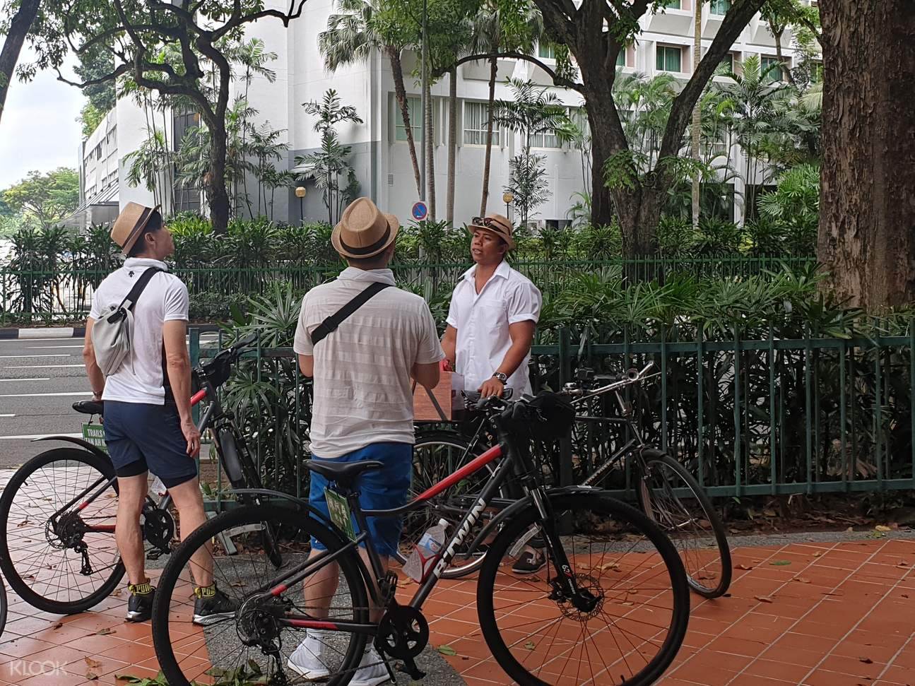 Biking tour with guide
