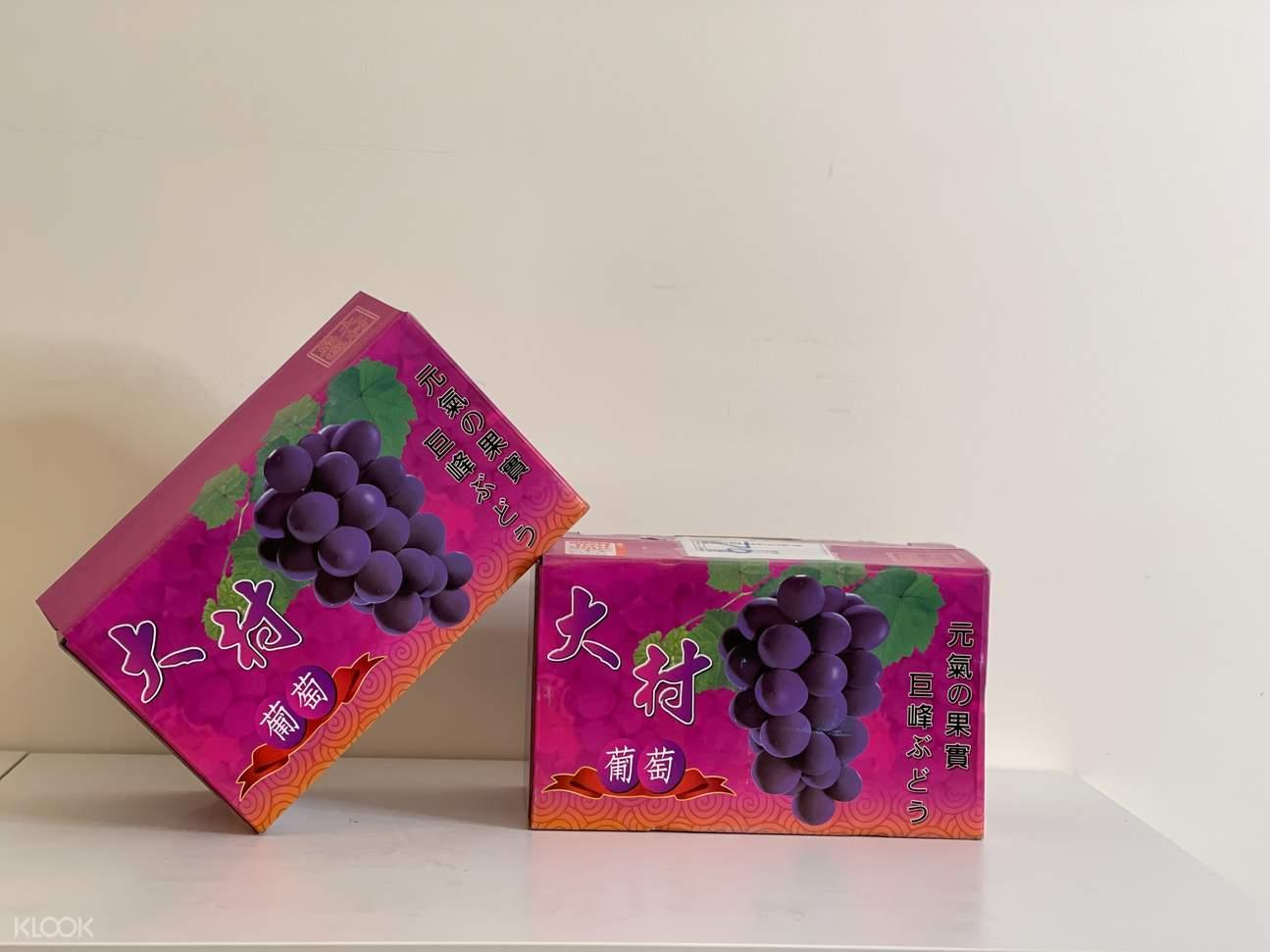 6/3 起開始採收,新鮮巨峰葡萄,鮮美多汁!產地直送!