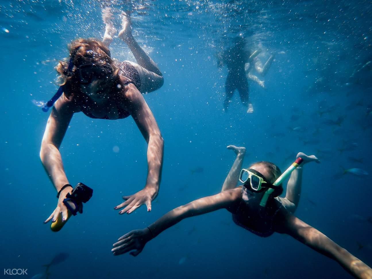 whitsunday snorkeling