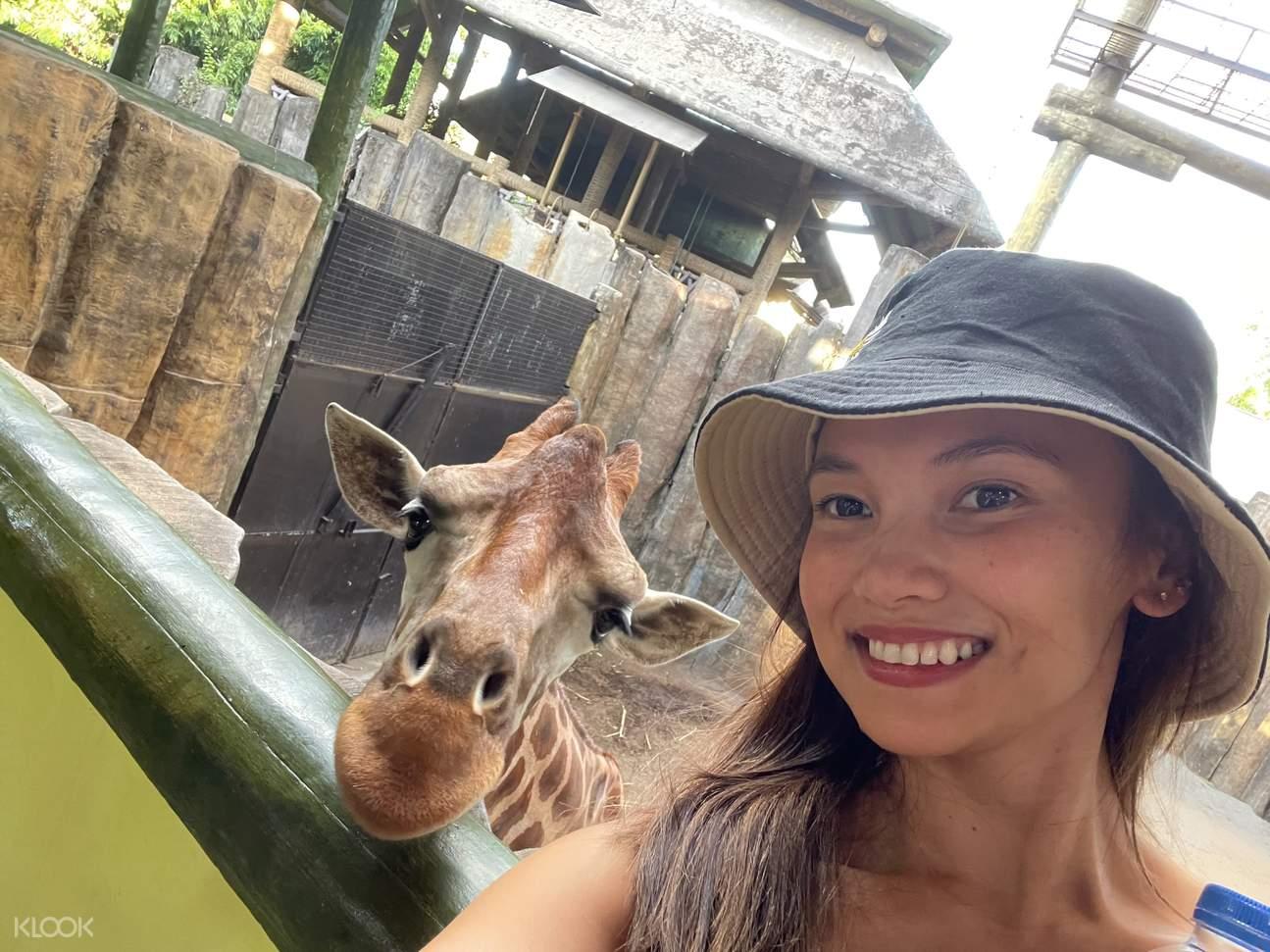 girl with giraffe in avilon zoo